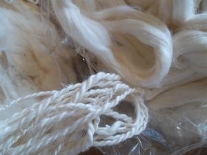 Fibre de coton